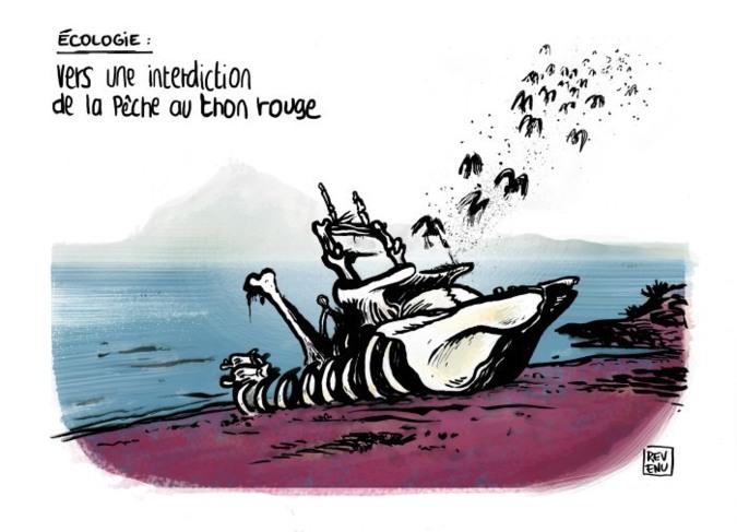 L'Hérault Trait Libre (suite 3) - 15 novembre 2012 au 28 février 2013 - Montpellier