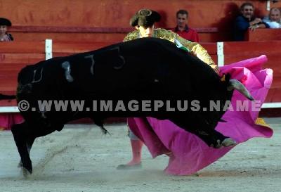 Fernandez Pineda - photo © Yvan Marcou