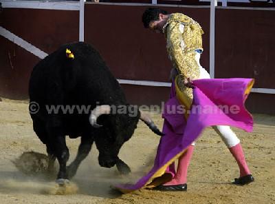 Jiménez Caballero - photo © Yvan Marcou