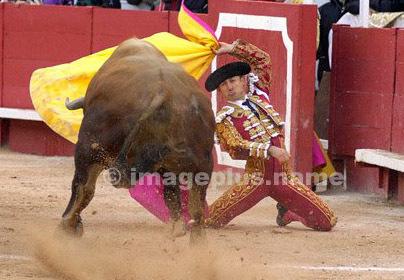 Légitimité de la tradition taurine