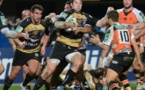 Rugby - MHR - Beneton Trevise (24-6)